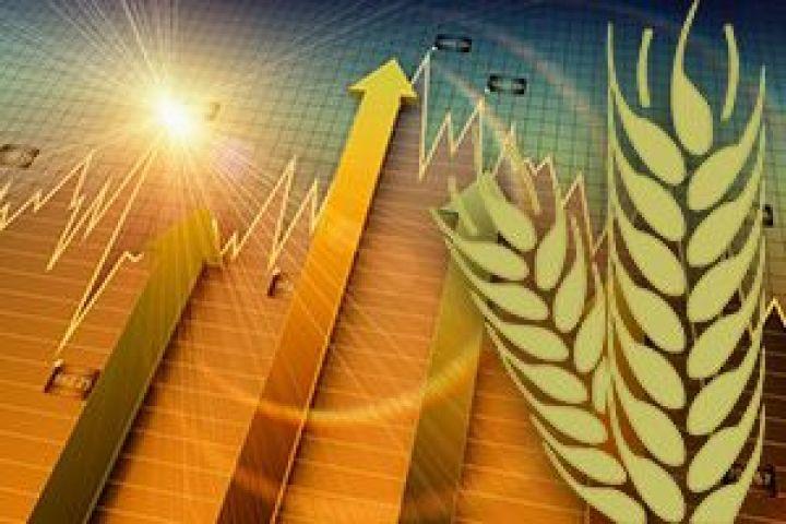 Продажа пшеницы с элеватора транспортер малогабаритный