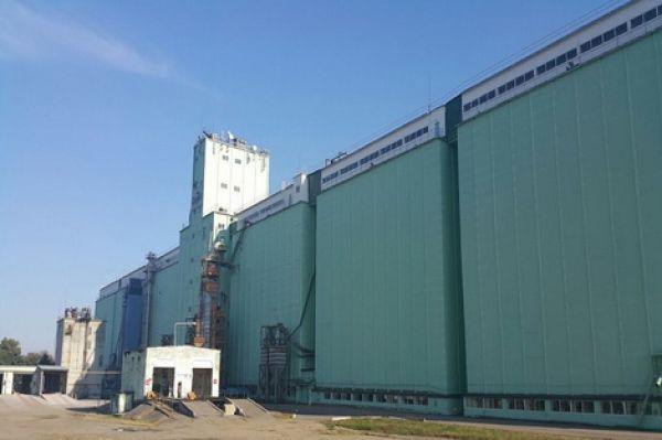 Гречишкинская зерновая компания ооо официальный сайт как работают компании по раскрутке сайтов