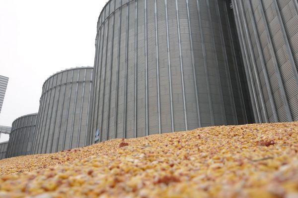Элеватор фундамент конвейер сельскохозяйственный