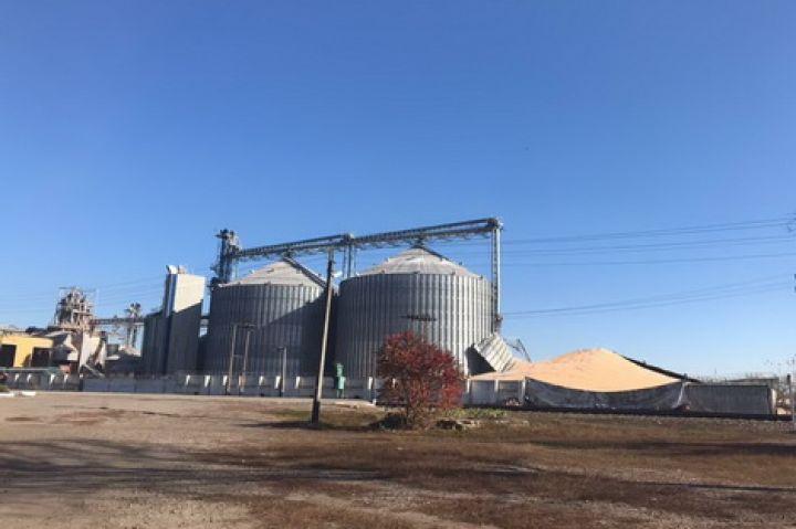 Хранение кукурузы в элеваторе элеватор для итп
