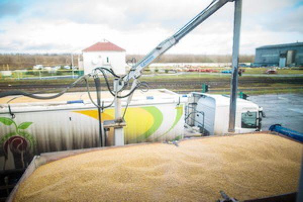 приемка зерна на элеватор