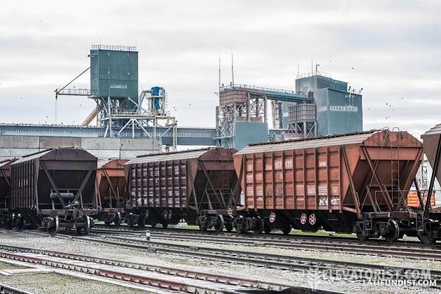 «Укрзализныця» в этом сезоне увеличила объемы перевозок зерна