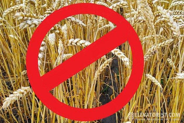 В России задумались над новыми ограничениями экспорта зерна