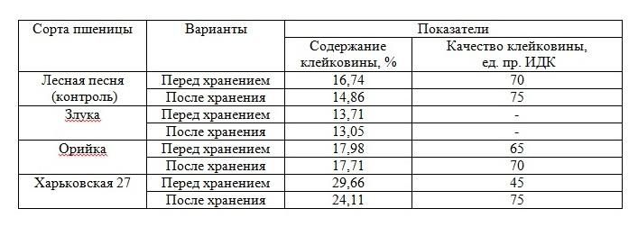 Динамика количества и качества клейковины в зерне пшеницы разных сортов во время хранения и заселения зерна долгоносиком