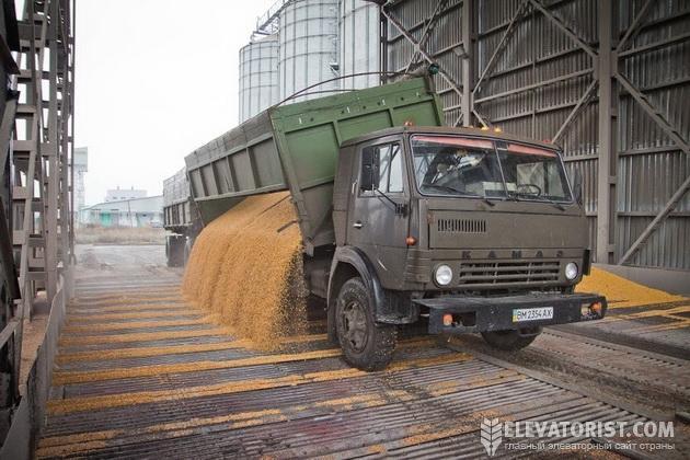 Выгрузка зерна