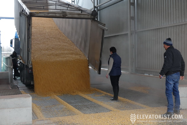 Приемка кукурузы