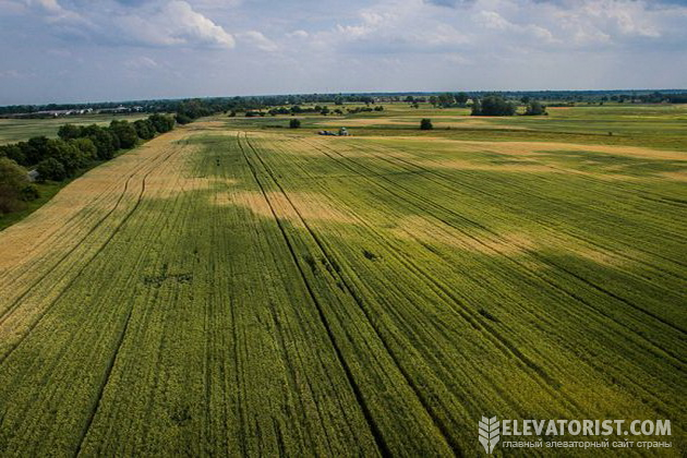 Закон об открытии рынка земли принят