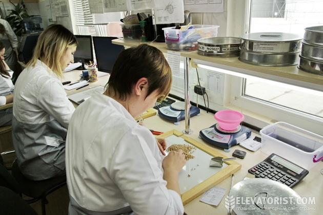 Лаборанты за работой