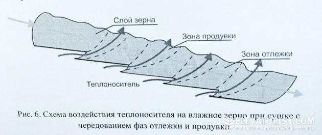 Схема воздействия теплоносителя на влажное зерно