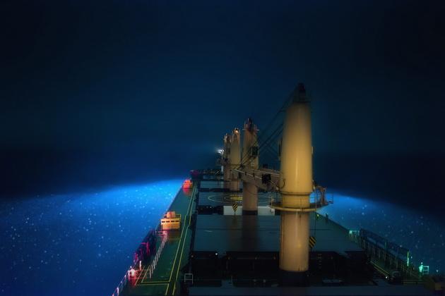 Планктон краиво светится ночью