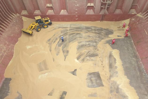 Последние усилия по выгрузке зерна выглядят именно так: бульдозер и метлы