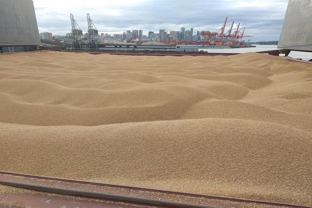Зерно погружено, судно готово к походу в порт назначения