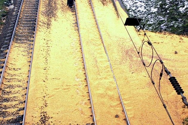 Зерновоз в Александрие