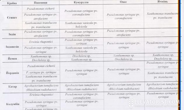 Фрагмент списка новых требований