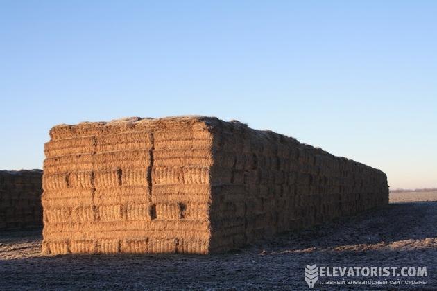 Запасы биотоплива для зерносушилки.
