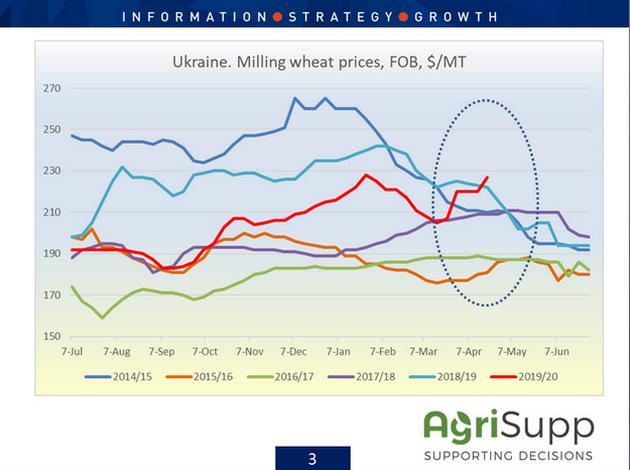 Сравнительный анализ ценовых тенденций на рынке пшеницы