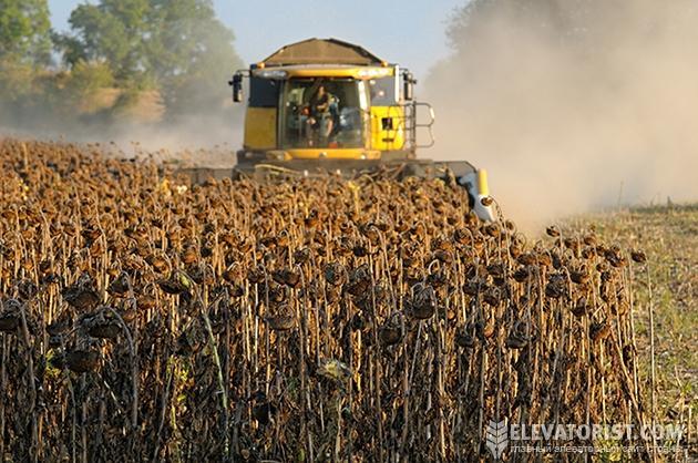 Если во время уборки подсолнечника и кукурузы будет тепло и сухо, то проблем не возникнет